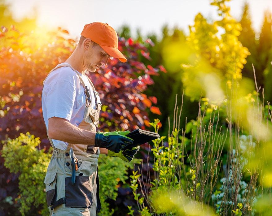 Aménagement et Création de Jardin : Nos engagements